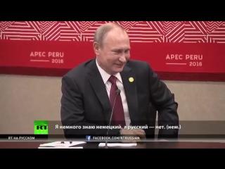 Владимир Путин и президент Перу решают, на каком языке будут общаться на саммите АТЭС.