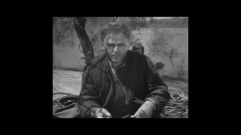 Алексей Матов – Судьба