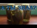 Вкусные острые маринованные огурчики на зиму Пошаговый рецепт