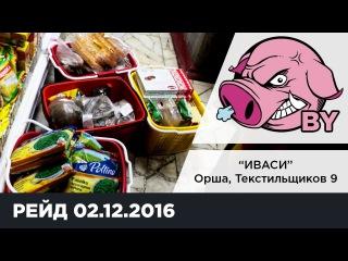 Хрюши против (Беларусь) - Бригада