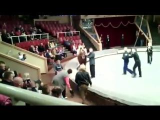 Комедия в цирке [Нетипичная Махачкала]