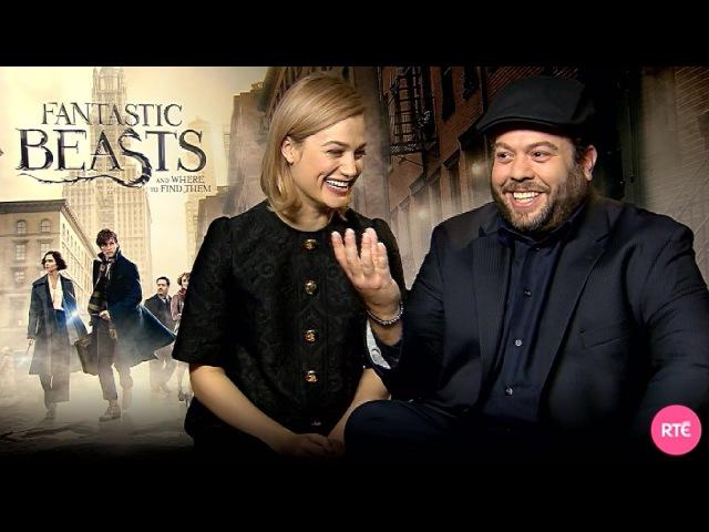 Dan Fogler Alison Sudol talk Fantastic Beasts and Where to Find Them