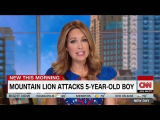 Mom pulls mountain lion off son |  5-year-old boy is recovering in a Denver hospital