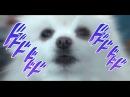 DogDog's Bizarre Barkventure OP「BORK PROUD」