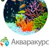 Мир аквариумов Акваракурс. Участникам скидка 5%