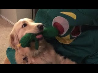 GUMBY IS REAL