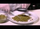 Зеленый горошек Естественный отбор