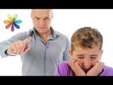 Кнут или пряник? Как правильно воспитывать ребенка? – Все буде добре. Выпуск 871 от 31.08.16