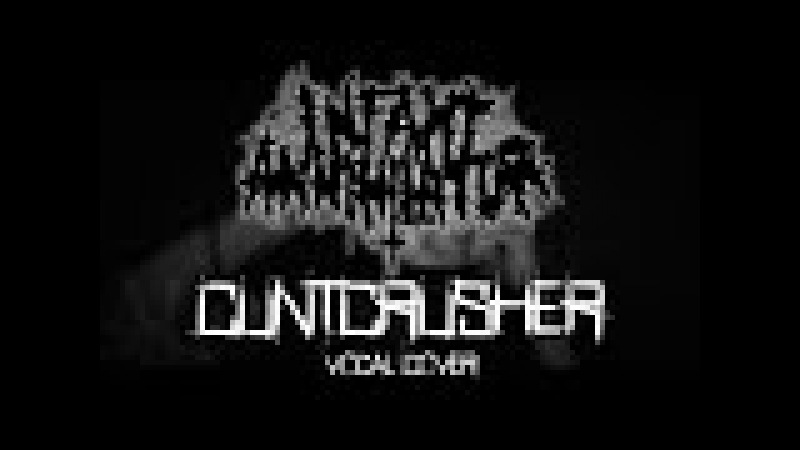 Mishok The Bear x Sergei Frol — Cuntcrusher (Infant Annihilator vocal cover)