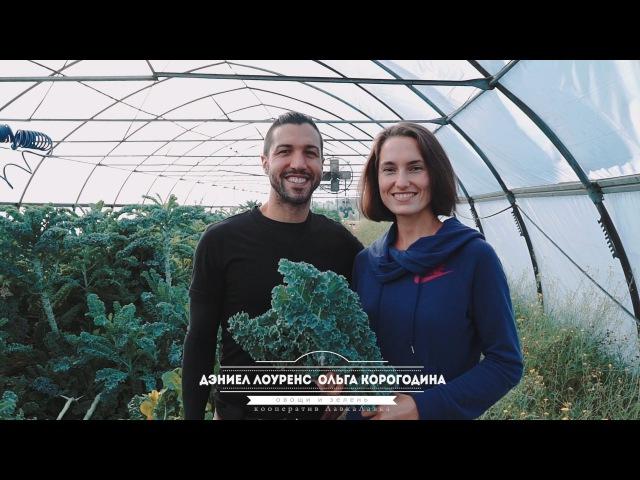 Дэниел Лоуренс и Ольга Корогодина, фермерский кооператив LavkaLavka