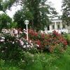 Ботанический сад им. Н.В. Багрова, КФУ
