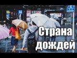 Цую - Сезон Сливовых Дождей в Японии Шамов Дмитрий