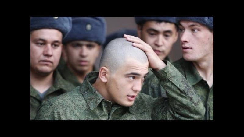 Зачем в Армии делают Бритоголовых. Ведьма Алёна Полынь