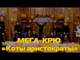 МЕГА КРЮ  Коты аристократы