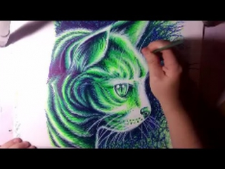 Drawing A Pop Art Kitty Cat With Neon Sharpie Markers - Timelapse Drawing Video by Carissa Rose