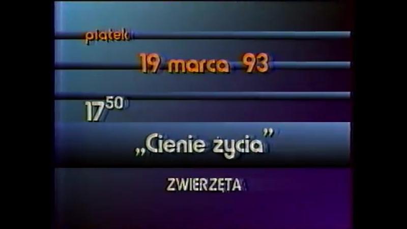 Диктор и программа передач (TVP2 [Польша], 18.03.1993)