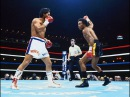 TOP 10 SUGAR RAY LEONARD KNOCKOUTS