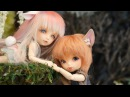 CP Fairy Land Sheep Wolf Story PukiFée Rin Tika Preview FHD