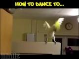 Как надо танцевать под разную музыку.