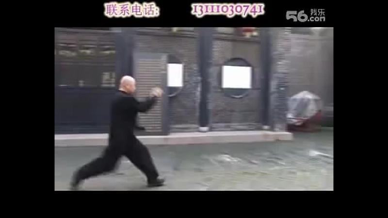 Chen Jinfu Daijiaquan jibengong wuxingquan zhoufa