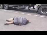 Чеченец против Украинских дальнобойщиков