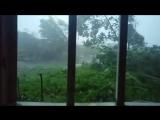 Typhoon Nepartak (尼伯特) effects in Taitung (臺東市), Taiwan _ 08 07 2016