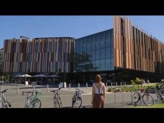 Как живут на кампусе Macquarie University от рассвета до заката