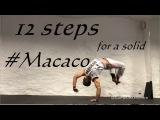 Tutorial #22  Macaco 12 steps