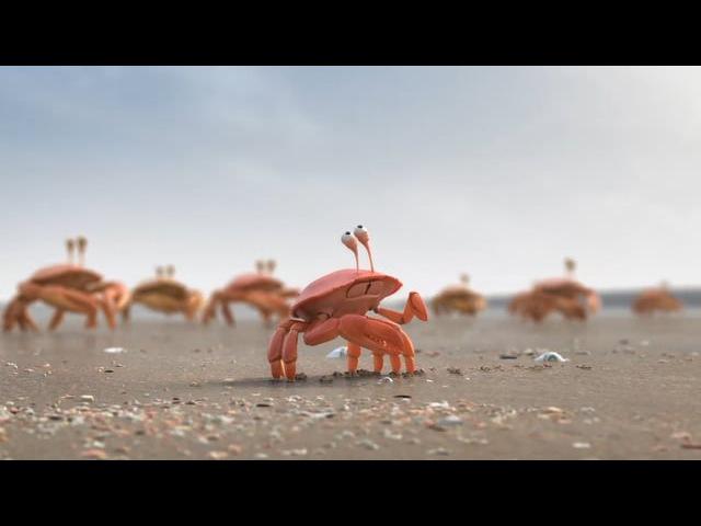 Wizz De Lijn Crabs