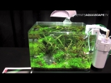 The Art of the Planted Aquarium 2015 - Scapers Tank (Nano) category, part 7