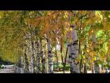КУДЕСНИЦА- ОСЕНЬ - Дмитрий Данилин - автор ролика Нелли Запольских