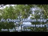 Fr. Chopin Aeolian Harp(Эолова арфа). Etude Op.25 - No.1 In A Flat (1)