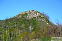 07 мая 2014 - Жигулёвск: Гора Шишка весной