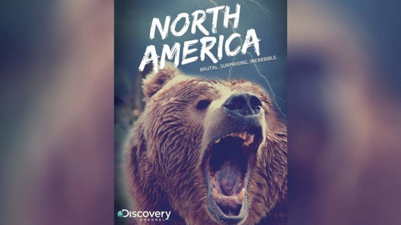 Discovery Северная Америка (2013) | North America