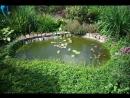 Афанасий на чистке водоема