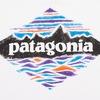 Patagonia - Одежда для активного образа жизни