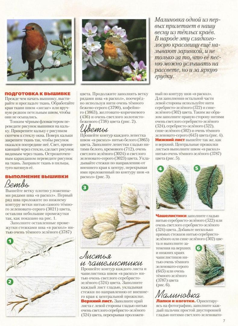 Вышивка гладью птицы схемы для начинающих 21