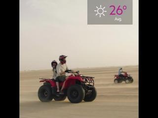 Сафари-приключения в Дубае