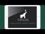 TopSlon - анализирует сайты конкурентов и дает рекомендации по текстам