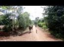 세계테마기행 - 천 개의 얼굴, 베트남 1부 구름 위를 걷다, 쯔엉선 산맥