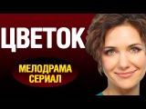 Цветок (2016) Русская мелодрама, Новые фильмы про любовь
