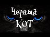 Жил да бы Черный кот