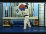 Нэрио чаги (Naeryo Chagi, Raising Kick, Axe Kick, Удар ногой сверху вниз). Complete Kicking (by Master Sang H. Kim)