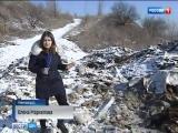 Под Новочеркасском обнаружили свалку с тоннами останков крупного рогатого скота
