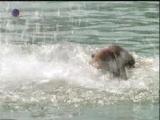 Ein Frau mi Kaliber 2 - drown non fatal