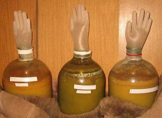 рецепты приготовления сидра в домашних условиях