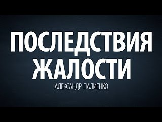 Последствия жалости. Александр Палиенко.
