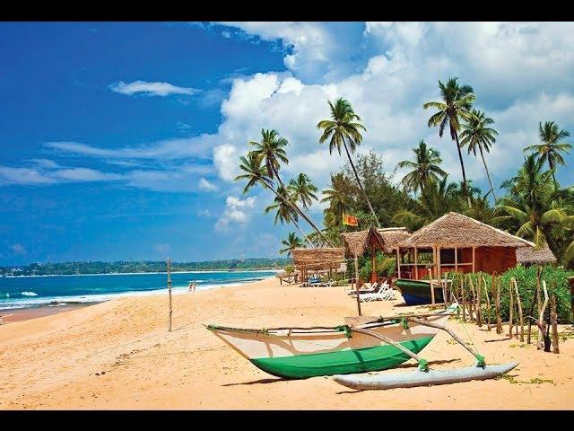 Шри Ланка, отзывы туристов, цены
