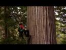 National Geographic Дикий Запад 1 часть 2012