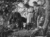 Tarzan and His Mate-34